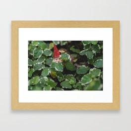 Peek-a-boo Gnome Framed Art Print