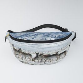 Pronghorns in the Basin Fanny Pack