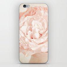 Pink Vanilla  iPhone & iPod Skin