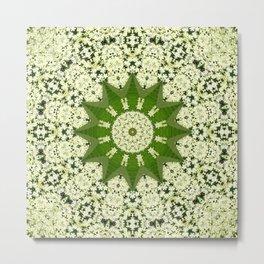Elderflower mandala Metal Print