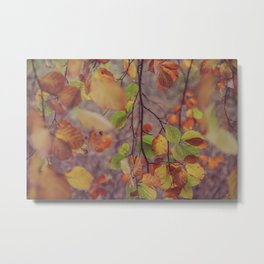 Falling Leaves II Metal Print