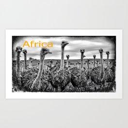 Africa III Art Print