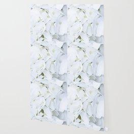 White hortensia flowers Wallpaper