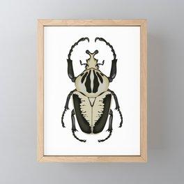 Goliath Beetle Framed Mini Art Print