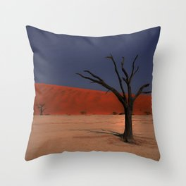 Haunting Deadvlei Namibia Africa Throw Pillow