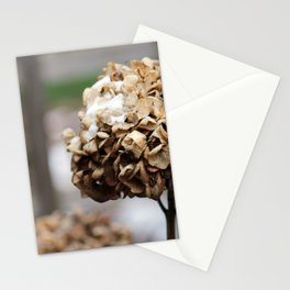 Death and Flowers Stationery Cards