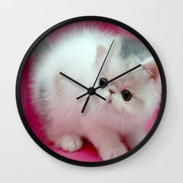 beyaz kedi Wall Clock