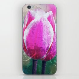 Spring broken ... iPhone Skin
