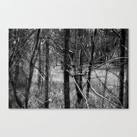 forrest Canvas Prints featuring Forrest by Samantha Pierce