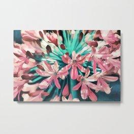 Sunny Agapanthus Flower in Pink & Teal Metal Print