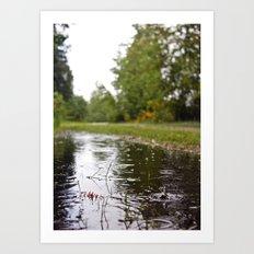 Wapato Park rain Art Print