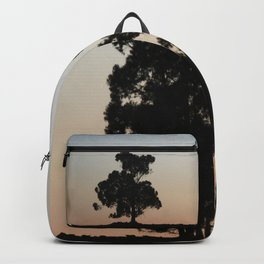 Eucalyptus trees at sunset Backpack