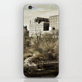 Vintage City Park iPhone Skin