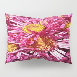 Pink Starburst Flowers Pillow Sham