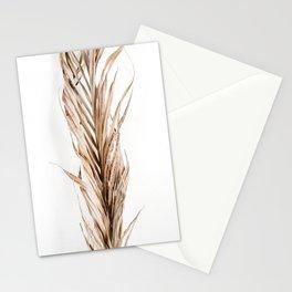 Lifestyle Background 37 Stationery Cards