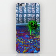 Florence Rose iPhone & iPod Skin