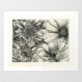 Giverny Art Print