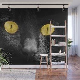 close up black cat yellow eyes Wall Mural