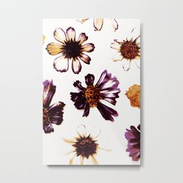 Pressed Autumn Flowers Metal Print