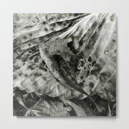 'ABSTRACT LEAF' Metal Print