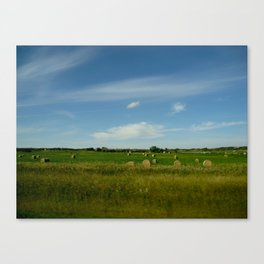Summertime in WaterValley Canvas Print