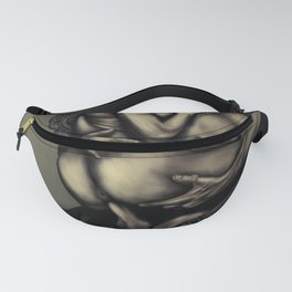 standing sex Dsire100 Fanny Pack