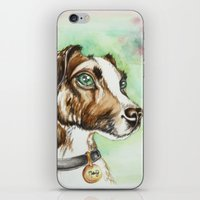 jack russell iPhone & iPod Skins featuring Jack Russell Terrier by lauramaahs