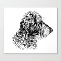 daschund Canvas Prints featuring Teckel by Silvia Mallofre