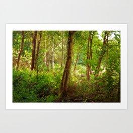 Surreal woodland Art Print