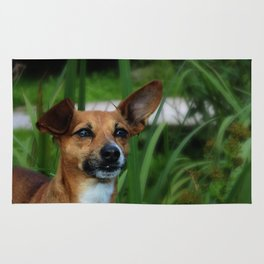 Little dog in dream long grass Rug
