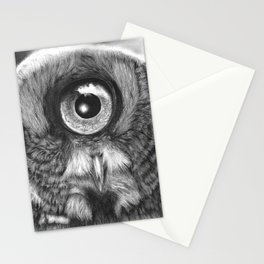 Evolution: Great Gray Owl Stationery Cards