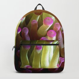 Anemone Bicolor Backpack