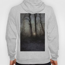 sunset in the forest Hoody