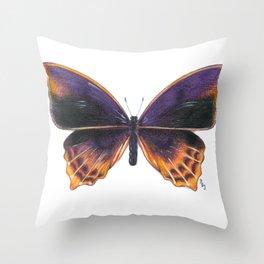Nymphalidae Alurgis, New Guinea Throw Pillow