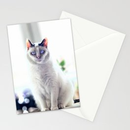 The Magic Cat Stationery Cards