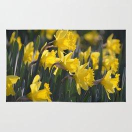 Narcissus Rug