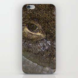 Crocodiles eye iPhone Skin
