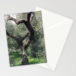 Old Olive Tree Mediterranean Grove Stationery Cards