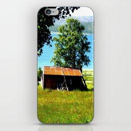 Arctic Beach iPhone Skin