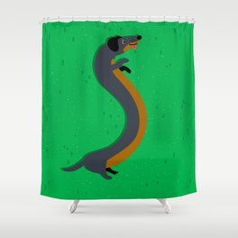 Solar-powered Wiener Shower Curtain