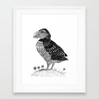 puffin Framed Art Prints featuring Puffin by Ameza-Art