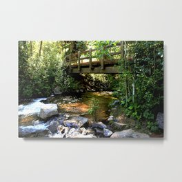 Bridge Over Fall Creek at Vallecito Metal Print