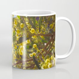 Golden Wattle Catches The Light Coffee Mug
