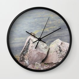 Extremal Groundhog  or King of the Mountain Wall Clock