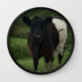 Belted Galloway Cow Wall Clock