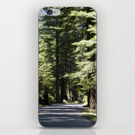 Humboldt State Park Road iPhone Skin
