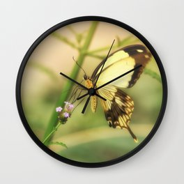 Exotic Butterfly natural beauty Wall Clock