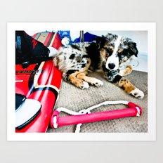Wake Boarding Pup Art Print