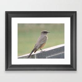 Catcher of the Fly Framed Art Print