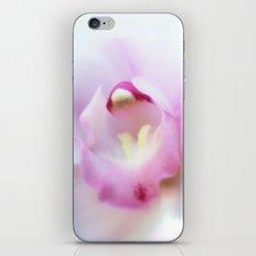 Cymbidium flower 9754 iPhone & iPod Skin